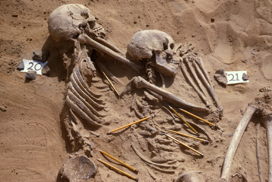 Excavation photo of the two victims of violence featured in Room 64 (burials 20 and 21). The pencils point to weapon fragments mixed with the bones. (photo: Wendorf Archive, British Museum)