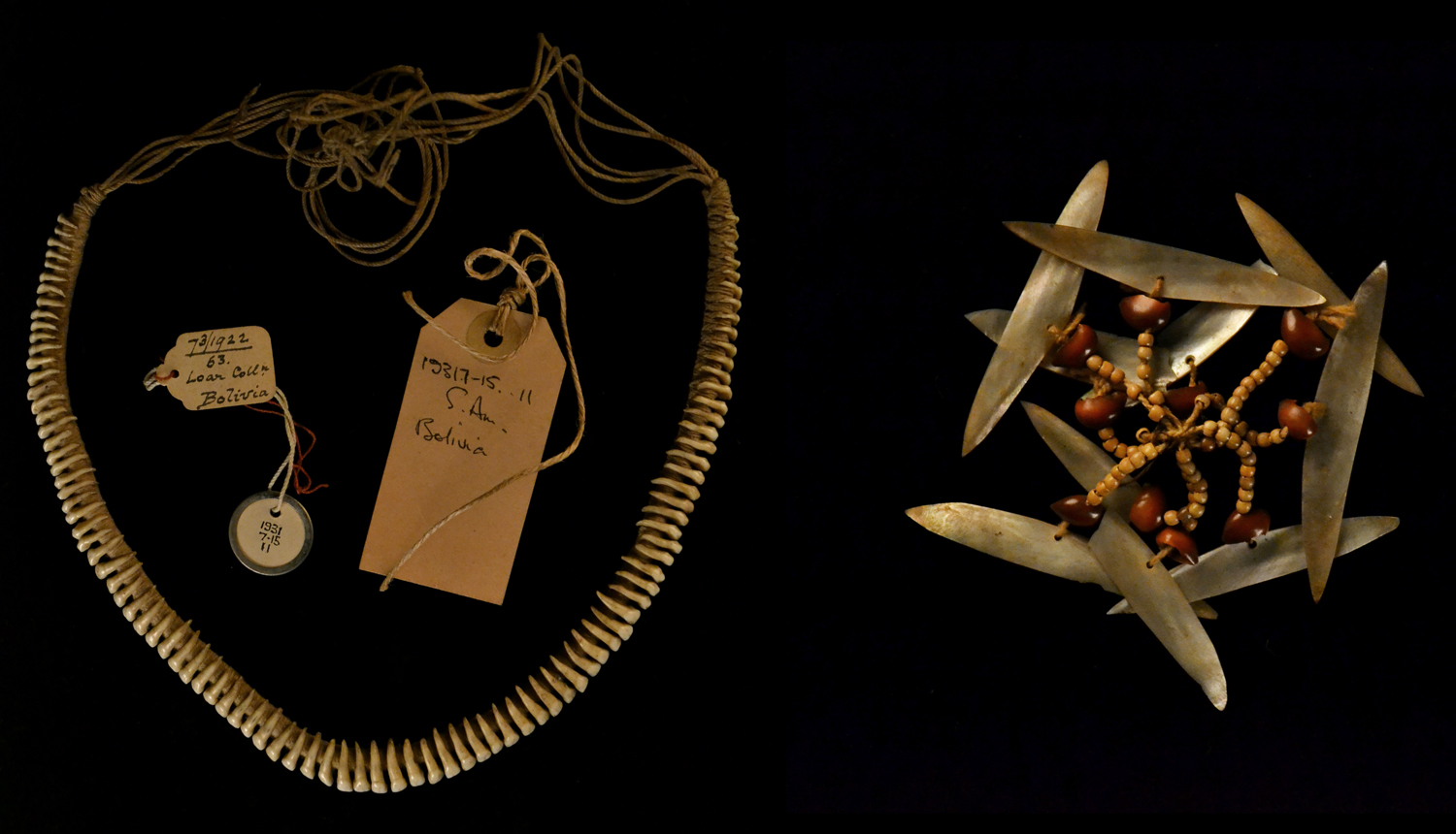 Left: Necklace made of mammal teeth and string. Formerly on loan to the Royal Geographical Society, donated by Nina Fawcett to the British Museum in 1931. Right: Ear ornament made of pearl-shell, beads and seeds. Formerly on loan to the Royal Geographical Society, donated by Nina Fawcett to the British Museum in 1931.