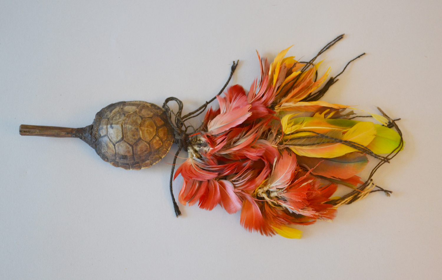 Rattle made of tortoise shell, feathers, wood and string. Karajá. Collected and donated by Roger Pettiward in 1932.