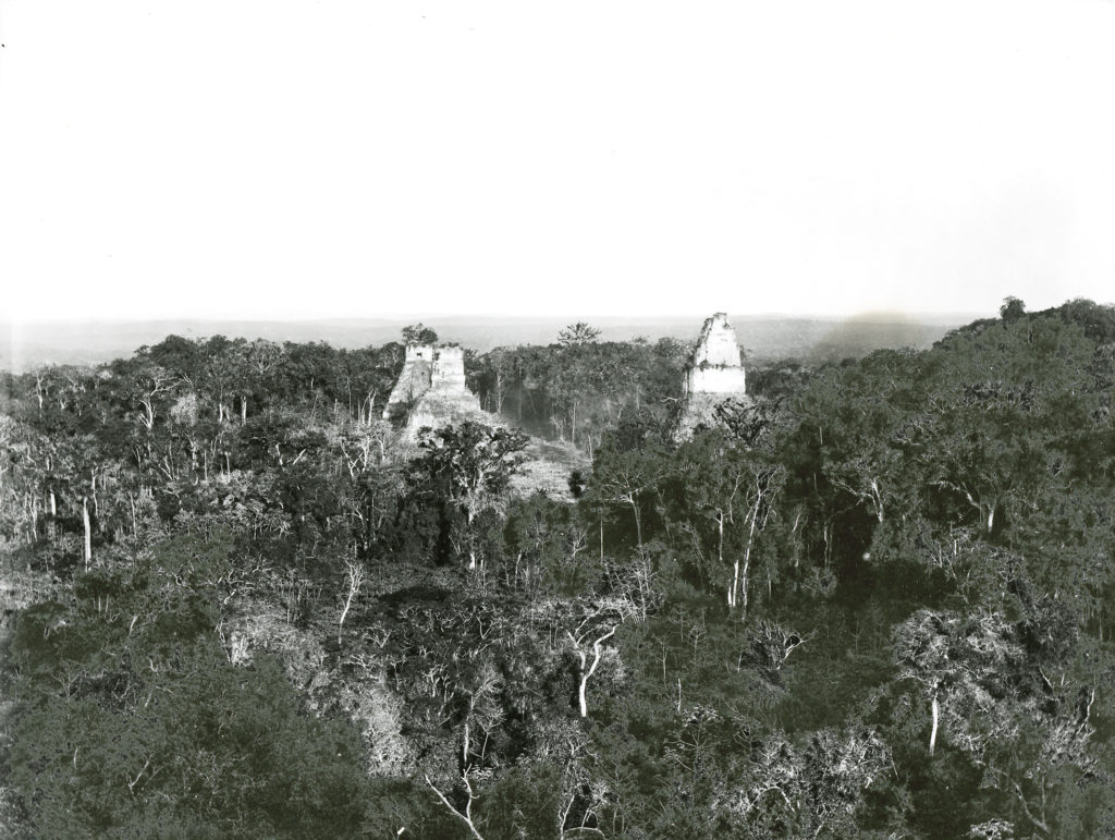 A black-and-white photograph of a mountainous and densely forested landscape. Two white ruins emerge from the canopy in the centre. The image fades towards the horizon.