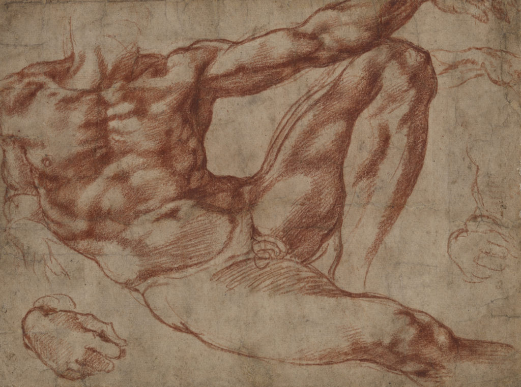A reclining, headless male torso rendered mostly in red chalk by Michelangelo as a study for the ceiling of the Sistine Chapel.
