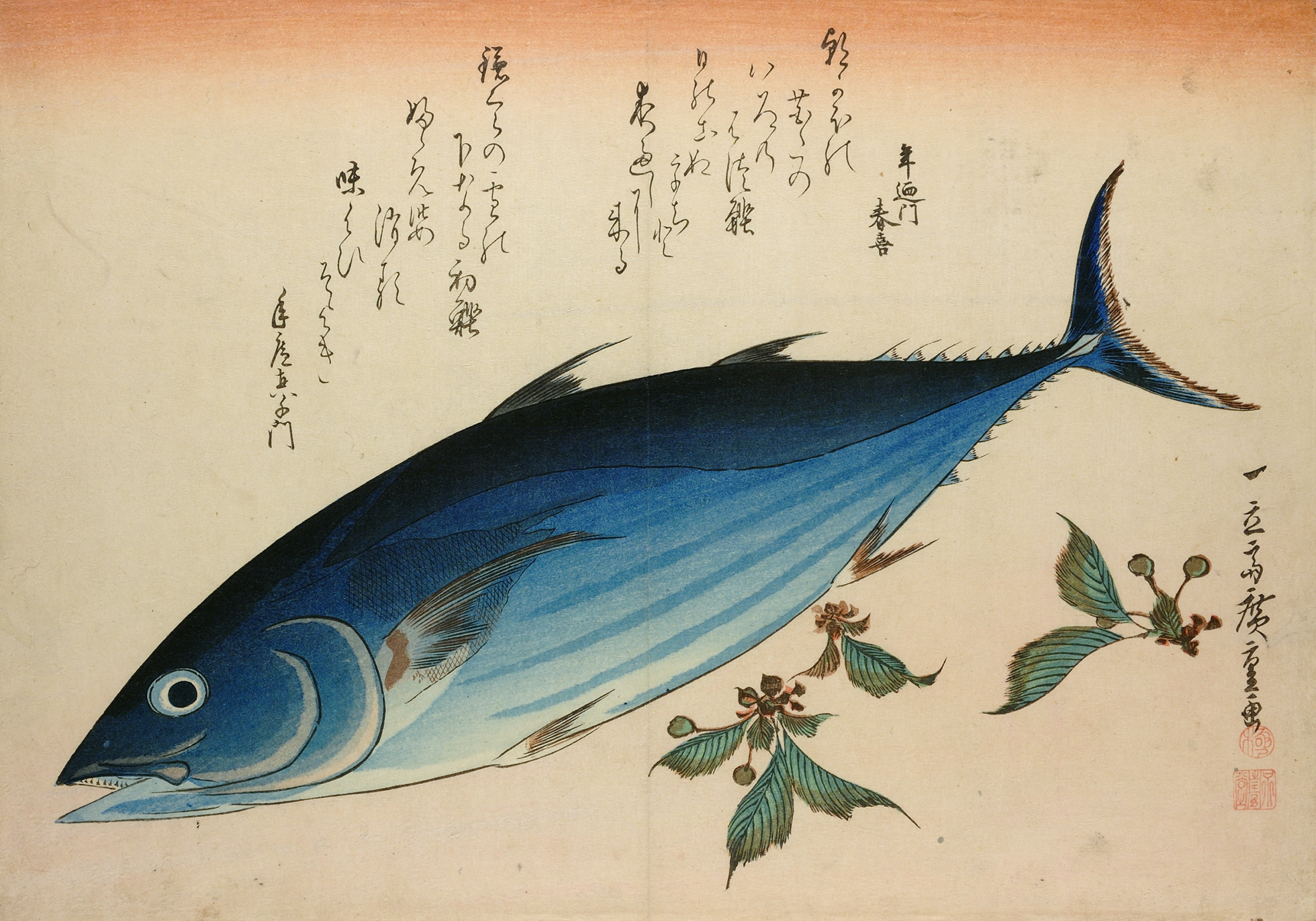 A colour woodblock print of a blue and silver fish, possibly katsuo, bonito or skipjack tuna with sprigs of saxifage and a poem inscribed above.