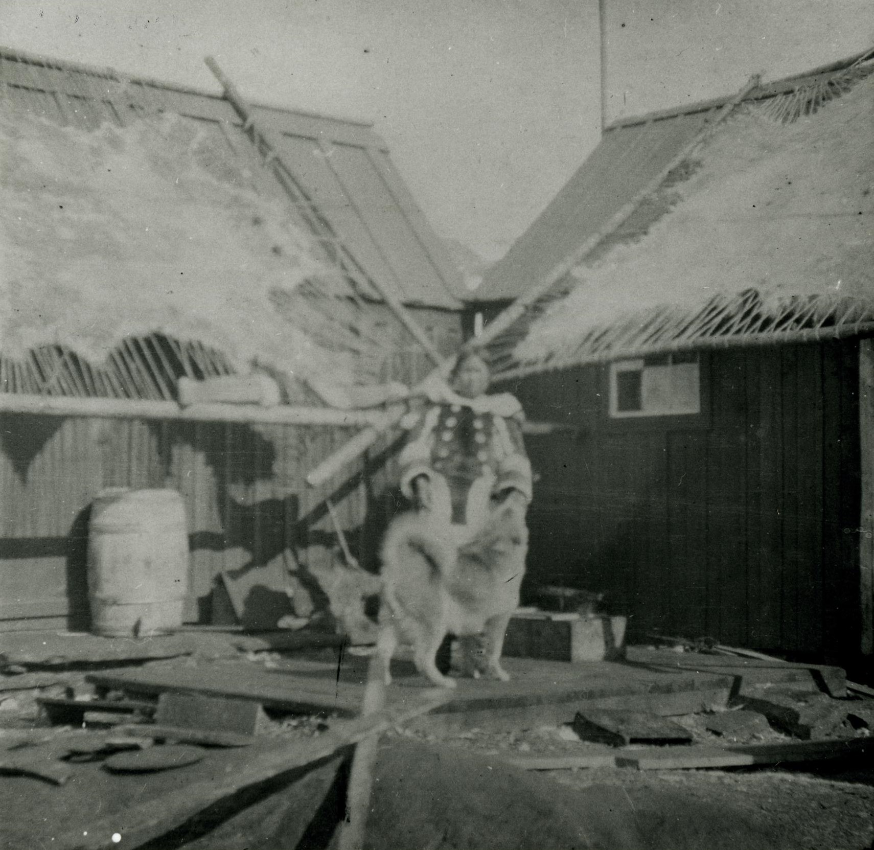 Photograph (black and white)  showing view of two pieces of skin stretched out on two drying frames, placed on top of two timber framed roofs. An Inuit woman stands in the foreground wearing a fur parka with a dog standing in front of her. There are pieces of timber in the foreground and a barrel beside the building on the left.