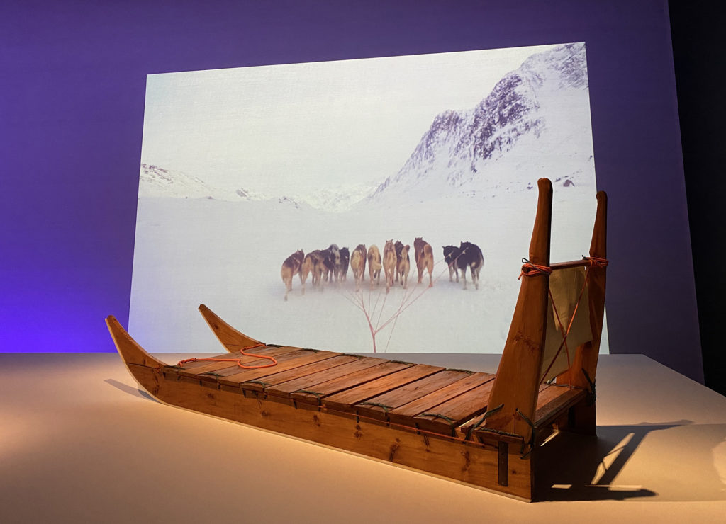 Sled of a very similar shape to the one pictured above. The sled has a runner on each side, which curves up away from the ground. There is a platform to stand on made of wood. The front of the sled has two vertical pieces on each side, which hold a horizontal bar. The sled is on display in the exhibition in front of a video showing a dog team from the perspective of someone on a sled.