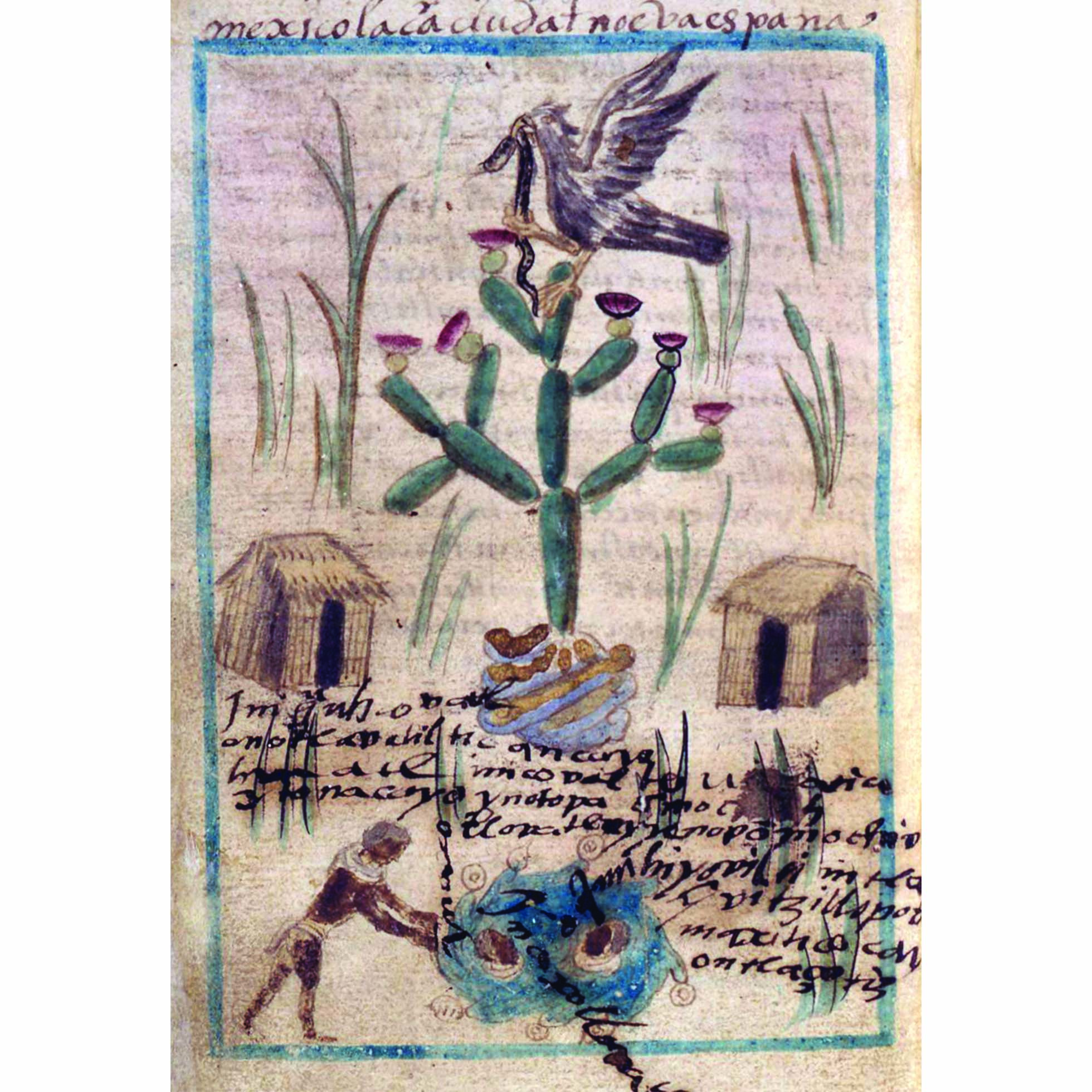 Page from the Aubin Codex, showing writing and illustrations of a bird, cactus, houses and a man.